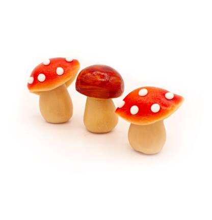 Réglette de champignons
